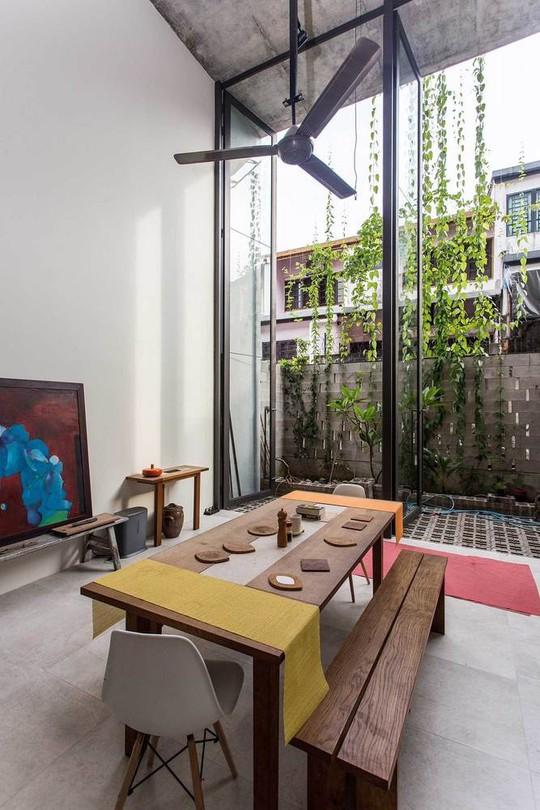 Ngôi nhà như rừng nhiệt đới với hơn 40 loại cây - Ảnh 7.