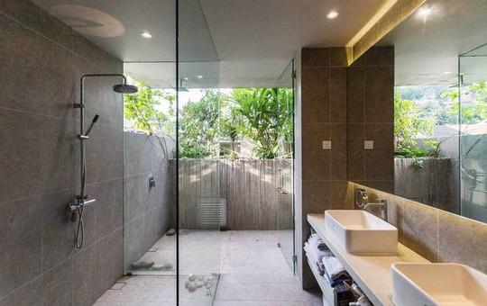 Ngôi nhà như rừng nhiệt đới với hơn 40 loại cây - Ảnh 9.