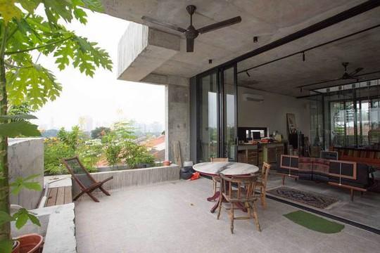 Ngôi nhà như rừng nhiệt đới với hơn 40 loại cây - Ảnh 11.