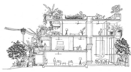 Ngôi nhà như rừng nhiệt đới với hơn 40 loại cây - Ảnh 12.