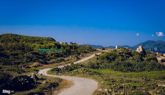 Gành Đá Đĩa thu hút đông đảo du khách dịp đầu năm - Ảnh 9.
