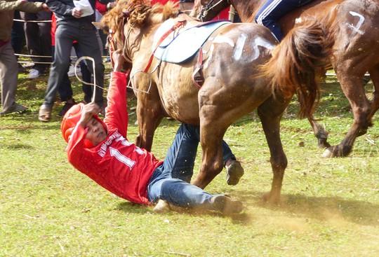 Sặc cười với các pha đua ngựa thồ Phú Yên - Ảnh 4.