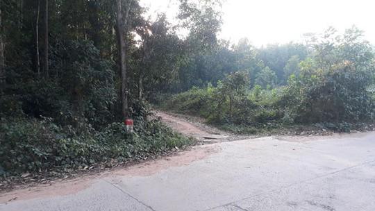 Phát hiện bộ xương người trong rừng ở Phú Quốc nghi tự tử - Ảnh 1.