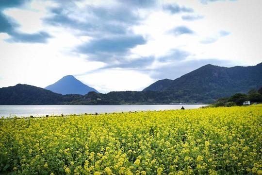 Kagoshima, vùng đất kỳ lạ với núi lửa nghìn năm - Ảnh 6.