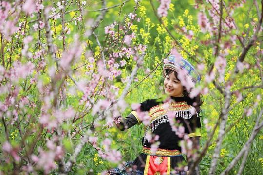 Thiên đường hoa đào đẹp chẳng kém Nhật Bản, Hàn Quốc là đây chứ đâu - Ảnh 4.