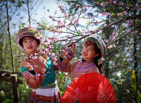 Thiên đường hoa đào đẹp chẳng kém Nhật Bản, Hàn Quốc là đây chứ đâu - Ảnh 5.