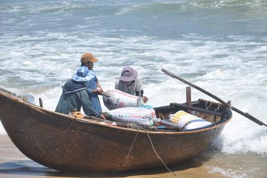 Quảng Ngãi: Ốc bé tẹo nhưng mang tiền triệu cho ngư dân - Ảnh 2.