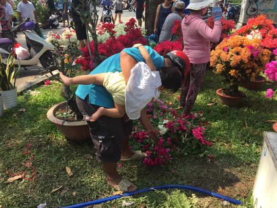 30 Tết, hoa kiểng rớt giá thê thảm nhưng ít bị đập bỏ - Ảnh 5.