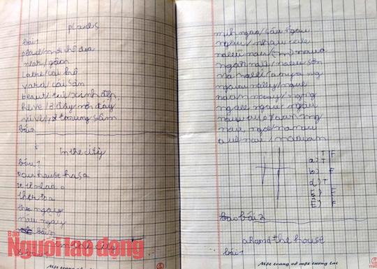 Vụ học sinh lớp 6 đọc, viết chưa thạo: Cho lên lớp để khỏi bỏ học! - Ảnh 3.