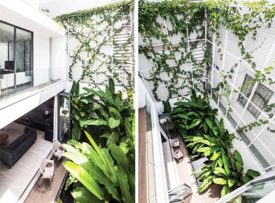 Phòng khách thông hai đầu ra vườn ở biệt thự  - Ảnh 5.