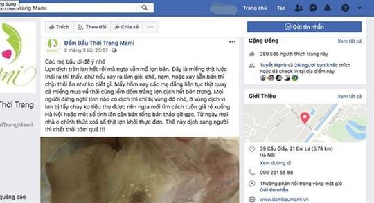 Chủ trang Facebook đăng tin sai sự thật về dịch tả lợn châu Phi có thể bị phạt 20 triệu đồng - Ảnh 1.