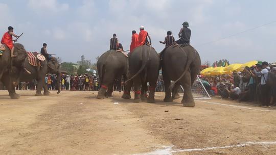Hàng ngàn người đội nắng xem voi dự tiệc buffet, đá bóng, chạy đua - Ảnh 9.