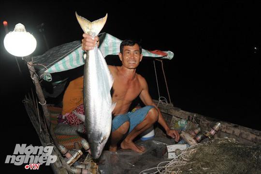 Sướng mắt theo ghe miền Tây săn tôm càng, cá bông lau - Ảnh 9.