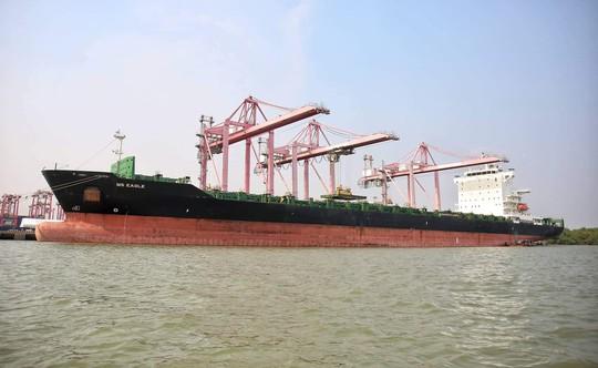 TP HCM đón tàu hàng lớn nhất từ trước đến nay - Ảnh 1.