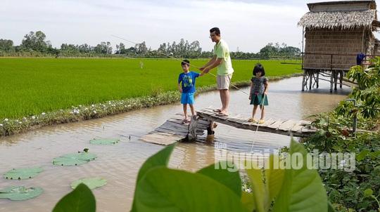 Về Đồng Tháp thích thú khi trải nghiệm du lịch nông nghiệp sạch - Ảnh 1.