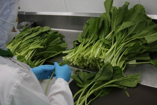 Khám phá bếp ăn đặc biệt làm 22.000 suất ăn/ngày cho các chuyến bay - ảnh 27