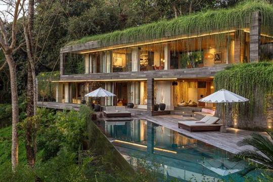 Căn nhà giữa rừng rậm vừa đẹp vừa tiện nghi - Ảnh 1.