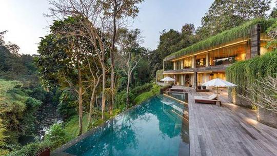 Căn nhà giữa rừng rậm vừa đẹp vừa tiện nghi - Ảnh 2.