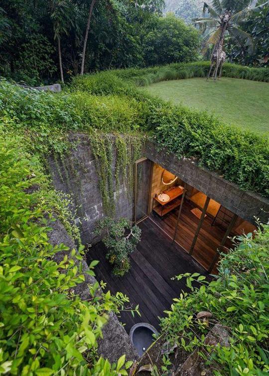 Căn nhà giữa rừng rậm vừa đẹp vừa tiện nghi - Ảnh 12.