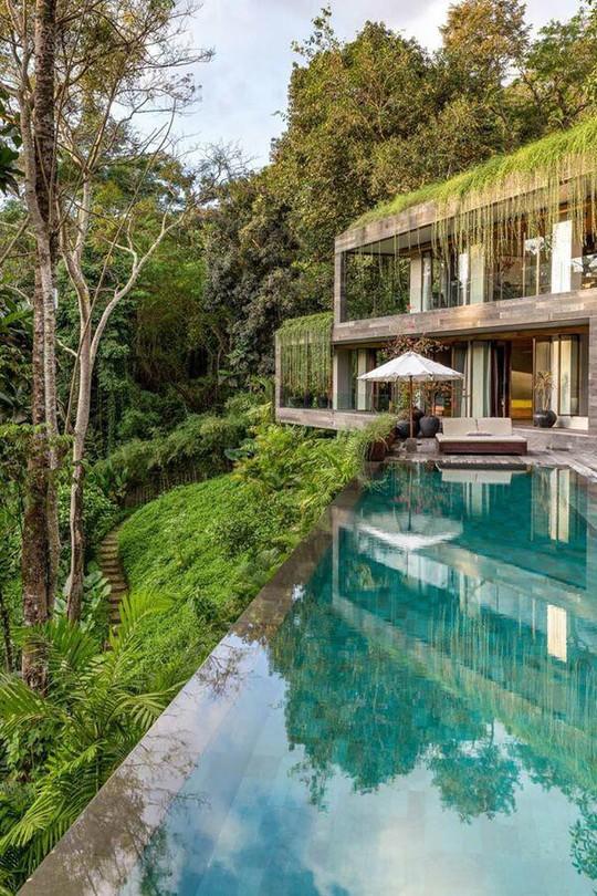 Căn nhà giữa rừng rậm vừa đẹp vừa tiện nghi - Ảnh 3.