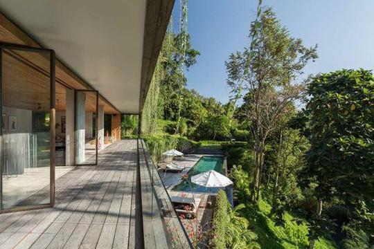 Căn nhà giữa rừng rậm vừa đẹp vừa tiện nghi - Ảnh 4.