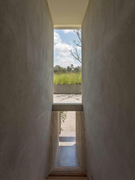 Căn nhà giữa rừng rậm vừa đẹp vừa tiện nghi - Ảnh 10.
