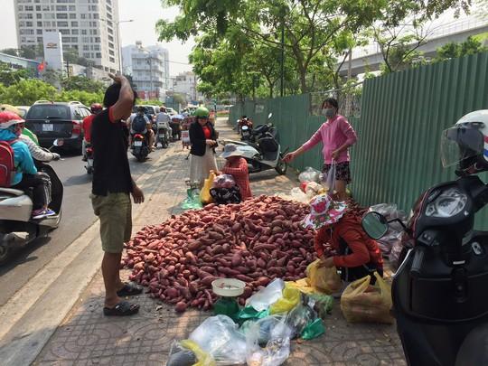 Khoai lang Nhật 10.000 đồng/kg tràn khắp các tuyến phố TP HCM