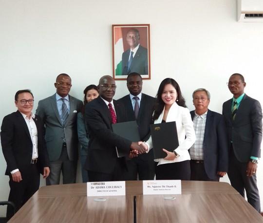 T&T Group ký hợp đồng mua 50.000 tấn hạt điều của Bờ Biển Ngà - Ảnh 1.