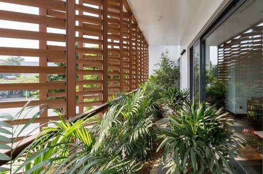 Ngôi nhà Việt Trì hứng nắng xuyên suốt 40 mét - Ảnh 9.