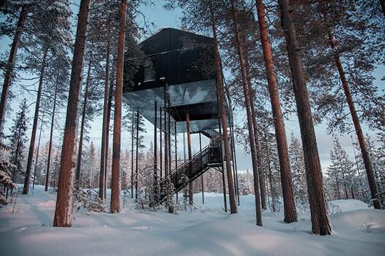 Báo Tây trầm trồ với căn nhà kính treo lơ lửng giữa rừng cây - Ảnh 1.