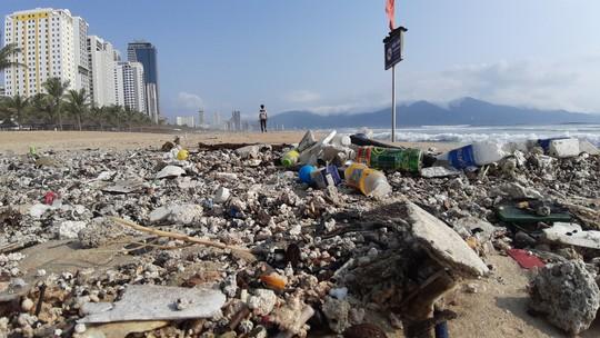 Hàng chục tấn rác bủa vây hơn 2 km bờ biển Đà Nẵng - Ảnh 10.