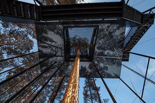 Báo Tây trầm trồ với căn nhà kính treo lơ lửng giữa rừng cây - Ảnh 3.
