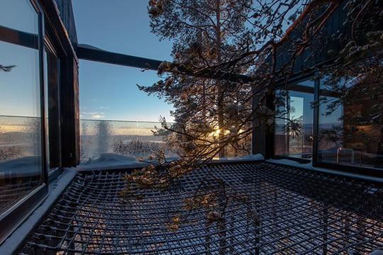 Báo Tây trầm trồ với căn nhà kính treo lơ lửng giữa rừng cây - Ảnh 5.