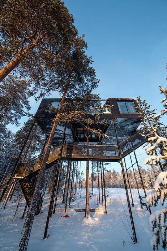 Báo Tây trầm trồ với căn nhà kính treo lơ lửng giữa rừng cây - Ảnh 6.