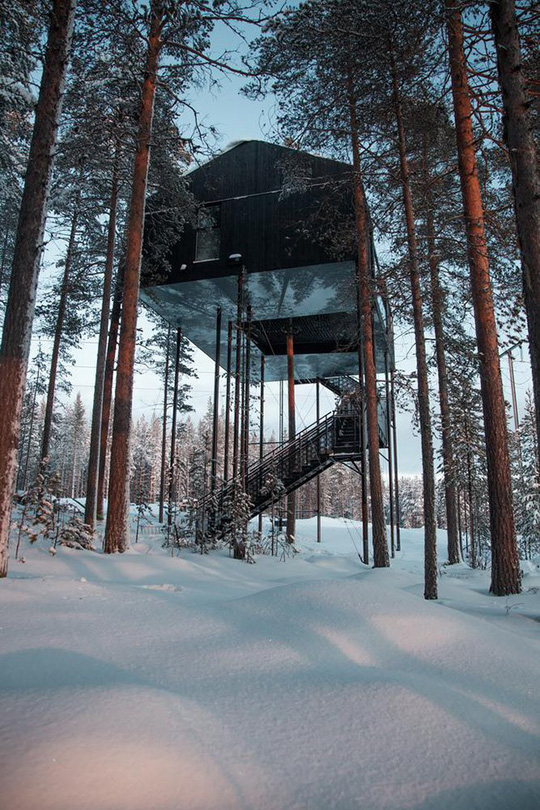 Báo Tây trầm trồ với căn nhà kính treo lơ lửng giữa rừng cây - Ảnh 7.