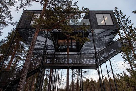Báo Tây trầm trồ với căn nhà kính treo lơ lửng giữa rừng cây - Ảnh 10.