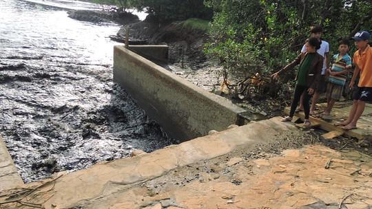 Bà Rịa - Vũng Tàu: Thu giữ bùn thải tại điểm nóng ô nhiễm để làm phân bón - Ảnh 2.
