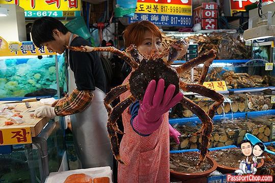 Khám phá món cua tuyết, đặc sản mùa xuân của Hàn Quốc - Ảnh 7.