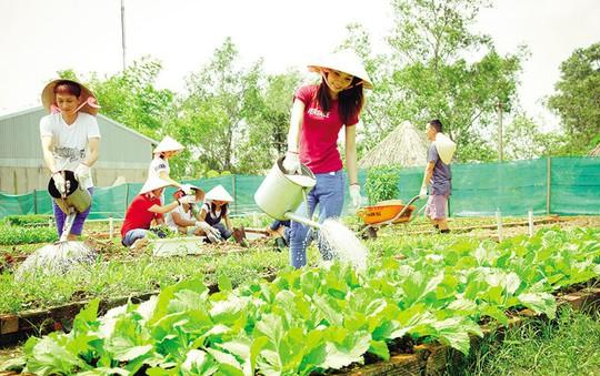 Forever Green Resort cùng góp thông điệp tại Triển lãm hoa quốc tế Việt Nam - Ảnh 4.