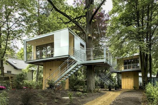 Ngắm ngôi nhà trên cây đẹp lãng mạn giữa đồi núi mênh mông - Ảnh 1.