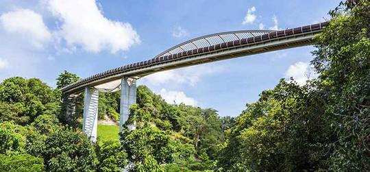 9 điểm du lịch miễn phí tuyệt đẹp nên đến ở Singapore - Ảnh 4.