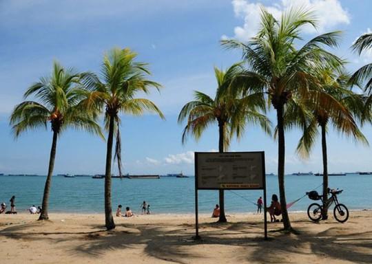 9 điểm du lịch miễn phí tuyệt đẹp nên đến ở Singapore - Ảnh 6.