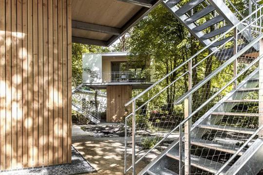 Ngắm ngôi nhà trên cây đẹp lãng mạn giữa đồi núi mênh mông - Ảnh 3.