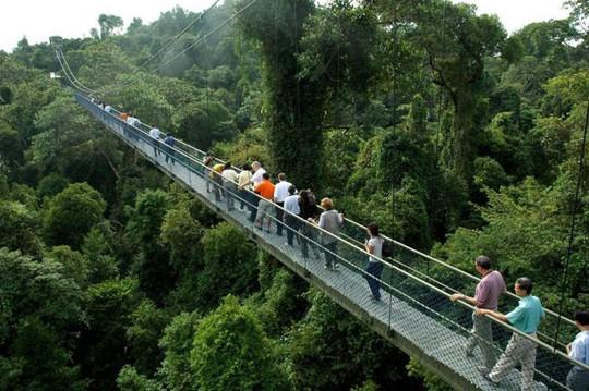 9 điểm du lịch miễn phí tuyệt đẹp nên đến ở Singapore - Ảnh 8.