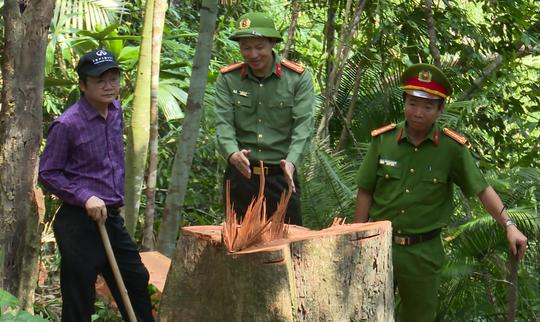 Giám đốc Công an tỉnh Đắk Lắk băng rừng bắt gỗ lậu - Ảnh 1.