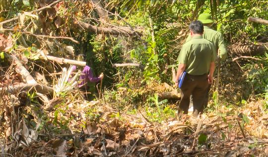 Giám đốc Công an tỉnh Đắk Lắk băng rừng bắt gỗ lậu - Ảnh 5.