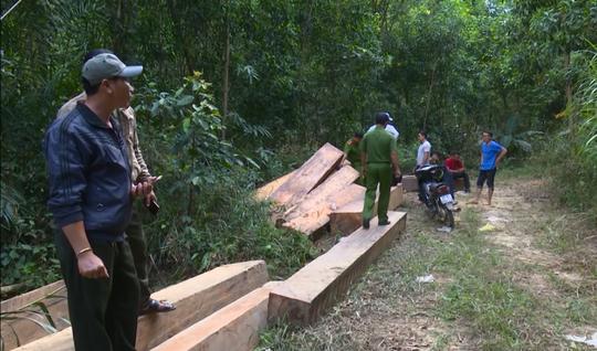 Giám đốc Công an tỉnh Đắk Lắk băng rừng bắt gỗ lậu - Ảnh 3.
