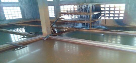 TP HCM: Nước ăn uống nguy cơ tái nhiễm vi sinh tại hơn 9 quận, huyện - Ảnh 1.