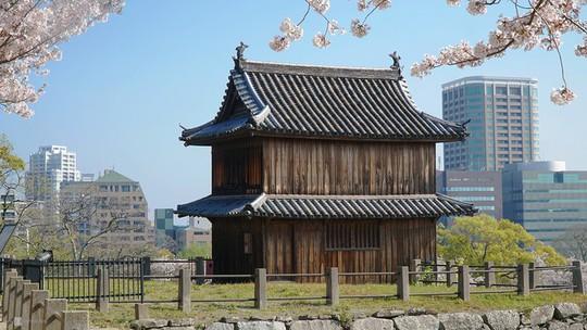 Thành cổ hơn 400 năm ở Nhật ngập trong sắc hoa anh đào - Ảnh 4.