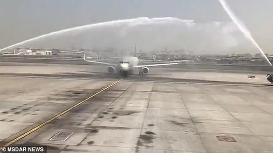 Hành khách bị thương vì máy bay trúng vòi rồng - Ảnh 1.